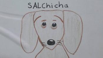 Pequeño busca a su perro perdido con dibujos