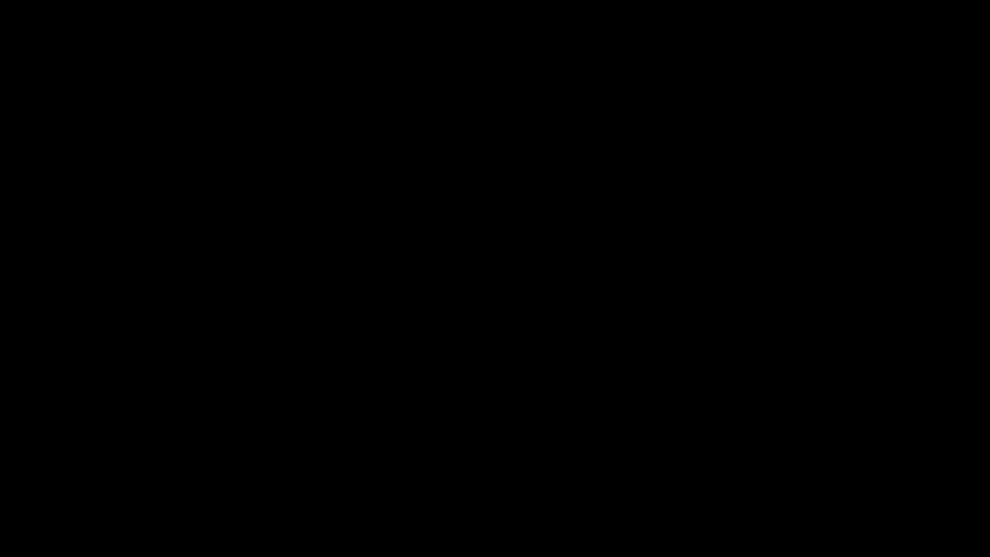 Tiraditos