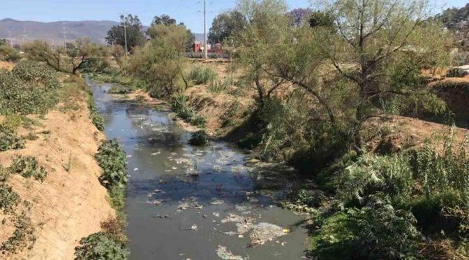 Ayuntamientos, omisos y solapadores de descargas residuales de empresas